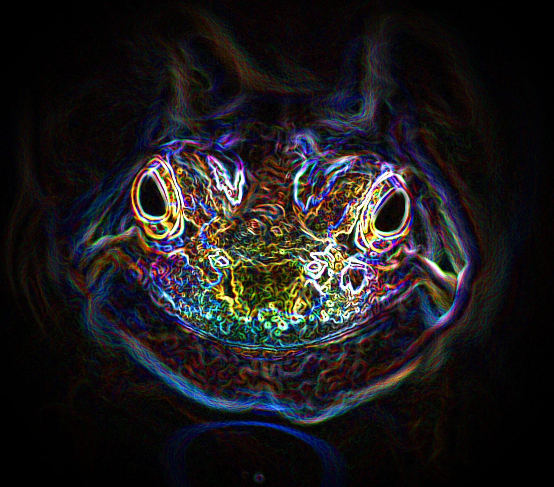Jsme v Matrixu, který dělá MJMJMJMJMJMJ aneb moje zkušenost s 5-MeO-DMT z žáby Bufo Alvarius